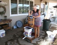 Wine Making 101