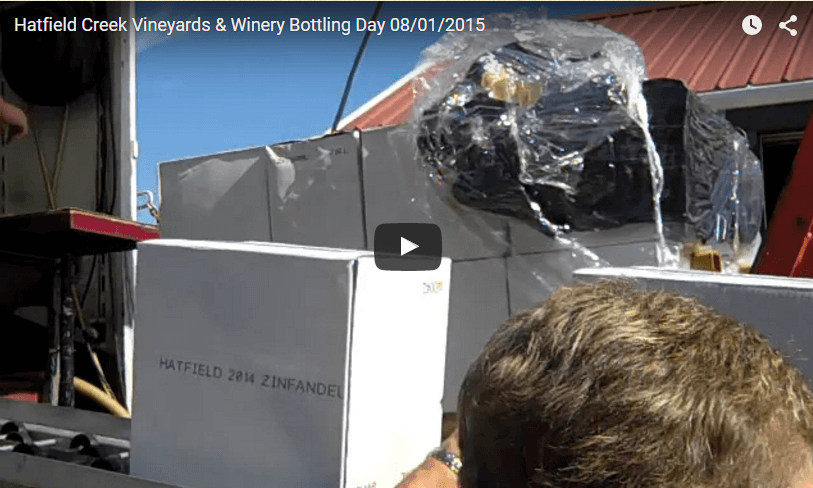 Hatfield Creek Vineyards & Winery Bottling Day